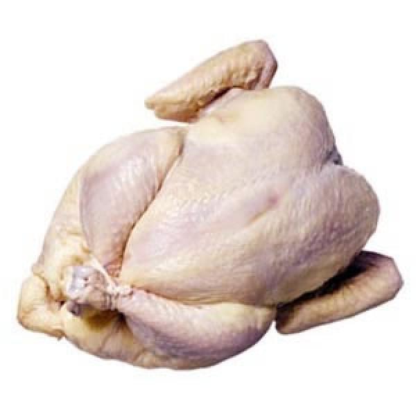 Pollo producción ecológica cat a (vacío 2,2 kg aprox.)
